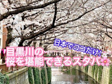 令和のお花見!中目黒川桜まつりの桜は上から見て楽しむ方法!