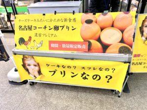 名古屋コーチンの卵をつかった新感覚プリン♪「めるたん」が関東初出店したので買ってみた!