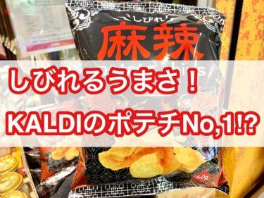 【カルディ限定】しびれ麻辣ポテトチップスのレビュー!【おつまみになるポテチ】