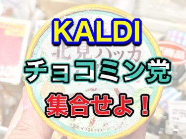 【カルディ】チョコミン党へ!北見ハッカアイスのレビュー!