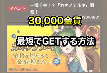 【偽りのアリス】目標は30,000金貨!金貨がもらえるイベントをまとめてみた
