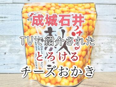 【成城石井】とろけるチーズおかきのレビュー!【とろける感はあまりない】