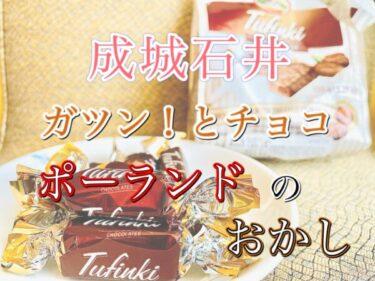 【成城石井】ポーランド直輸入!チョコウエハースのレビュー!