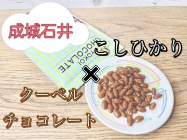 【成城石井】福井県産こしひかり使用!?こしひかりチョコのレビュー!