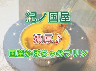 【紀ノ國屋】季節限定!「国産かぼちゃのプリン」レビュー!